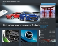 Bild Webseite  Fürth
