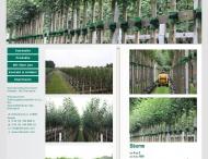 Bild Webseite Kleinwort Heino u. Jens Baumschulen Holm