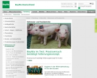 Bild Webseite  Velden