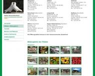 Bild Blumen-Börse Skonitis GmbH