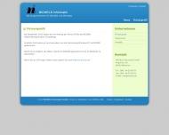 Website Nickels Informatik