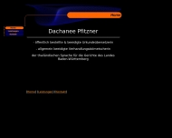 Website Pfitzner D.