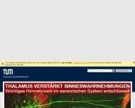 Bild Webseite Großer Saal der staatl. Hochschule für Musik und Theater München