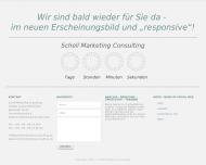 Website Schell Marketing Consulting Analyse Beratung Umsetzung Training