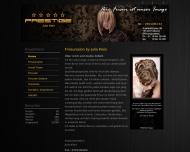 Bild Webseite PRESTIGE Friseur inh. Julia Klein Freiburg im Breisgau
