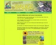 Bild Webseite  Speichersdorf