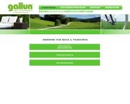 Bild Gallun GmbH & Co. KG Media und Werbeagentur, Verlagsvertretungen