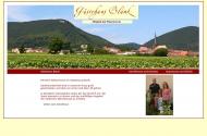 Bild Webseite  Hainfeld