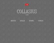 Bild Collasius Wilh. & Sohn Export-Import-Services