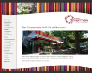 Bild Chrysanthem Hoffmann & Hornstein GmbH