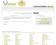 Bild Webseite cesar Internetdienste Hamburg