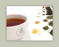 Bild Teehandelskontor Sturm GmbH