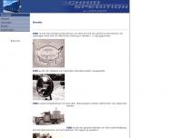 Bild Webseite  Störnstein