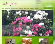 Brigittas Garten Design GmbH
