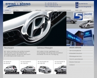 Bild Webseite  Ahaus