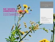 Bild daspferd. Agentur für Kommunikation GmbH