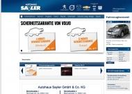 Bild GSS Automobile-Autohaus Sayler GmbH