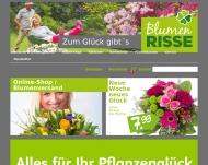 Bild Blumen Risse GmbH & Co. KG