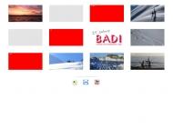 Bild BADI Software & Systemberatung GmbH