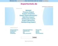 Bild Webseite  Burgstädt