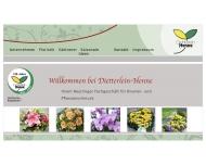 Bild Dietterlein - Henne OHG Gärtnerei - Blumengeschäft