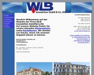 Bild Webseite WLB Immobilien Magdeburg