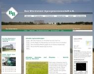 Website Buir-Bliesheimer