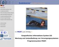 Bild Hammerer Systemmesstechnik Ingenieurberatung