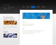 Website Magdeburger Digitaldruckerei