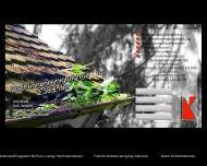 Website Dachrinnenreinigung-preiswert