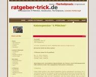 Website Katzenpension & Tierheilpraxis 4 Pfötchen