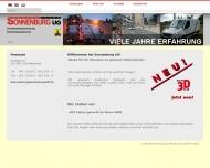 Bild Webseite  Schmallenberg