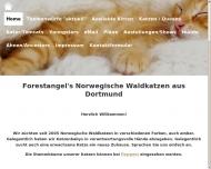 Bild Forestangel's Norwegische Waldkatzen