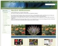 Bild Casa-fiori