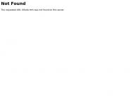 Website B.a.u. Form