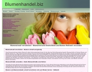 Website Blumenhandel.biz
