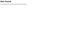 Website Institut Sinnfindung im Beruf