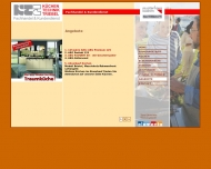Website Triebel Küchen-Technik