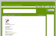 Website B & S Containerdienst