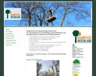 Bild Wehberg Baumpflege