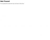 Website Elektro-Donner