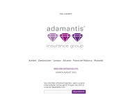 Bild adamantis insurance broker Holding GmbH