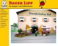 Bild Webseite  Weiterstadt
