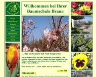 Bild Baumschule Braun GmbH