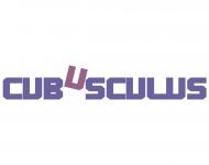 Bild CUBUSCULUS UG (haftungsbeschränkt)