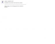 Bild Webseite cubia Aktiengesellschaft Konstanz