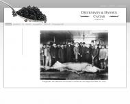 Bild Webseite Dieckmann & Hansen Hamburg