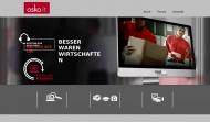 Bild Webseite OSKO-IT UG Hamburg