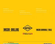 Bild Webseite  Nienhagen