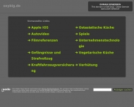 Bild Webseite OXYBIG UG Hamburg